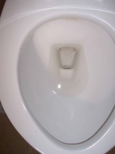 Sharon Reed Toilet Bowl Rust Removed After Edfred Cling N