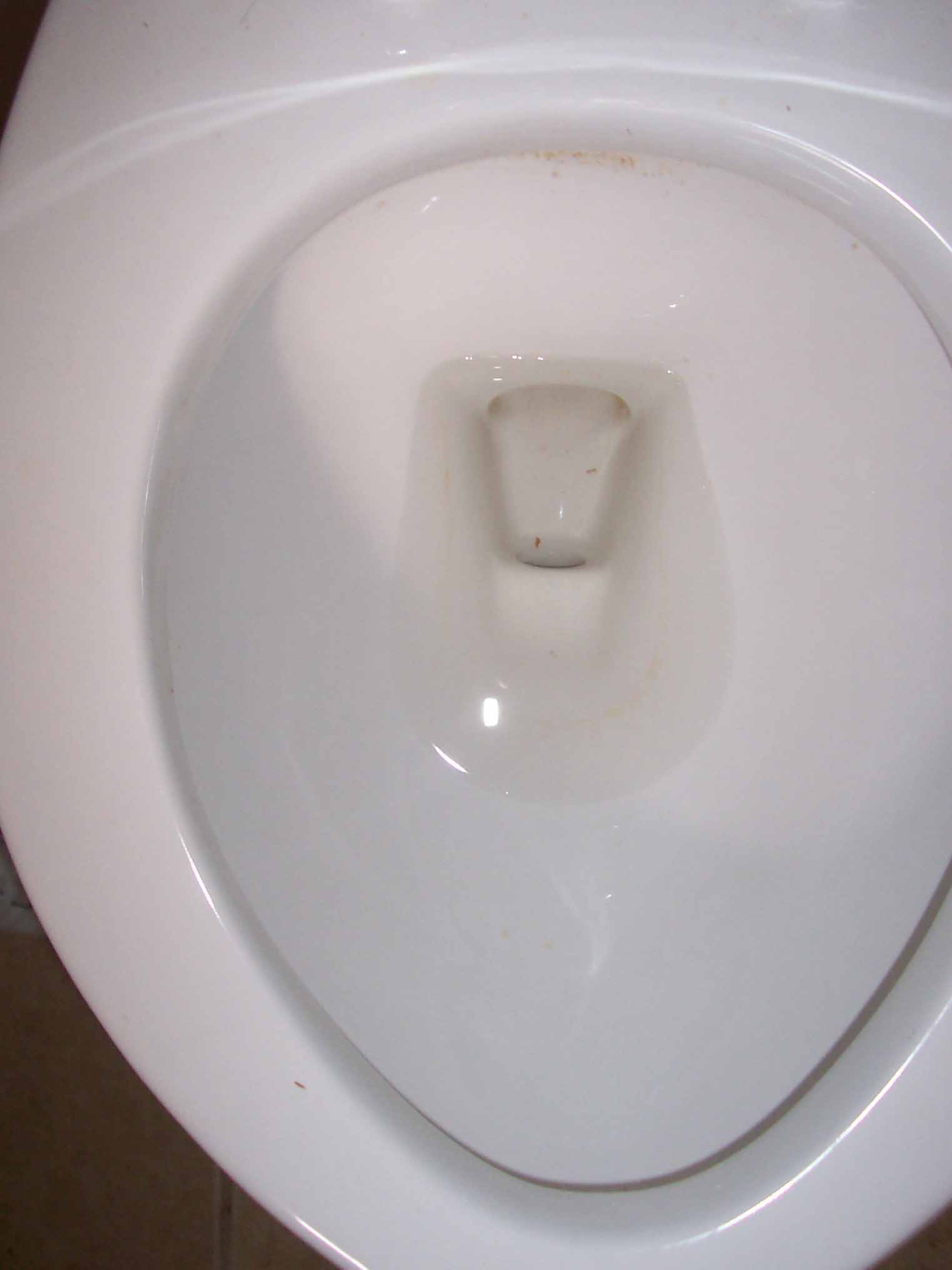Sharon Reed Toilet Bowl Rust Removed After Edfred Cling N Clean ...